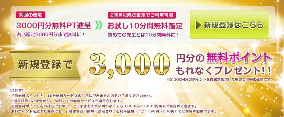 新規登録で今なら3,000円分の無料ポイントを進呈